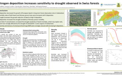 Nitrogen deposition increases sensitivity to drought observed in Swiss forests