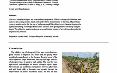 Changes in nitrogen agricultural practices to increase farm sustainability – tomato production