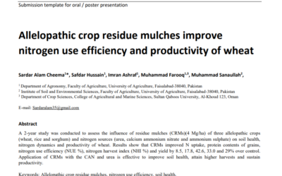 Allelopathic crop residue mulches improve nitrogen use efficiency and productivity of wheat